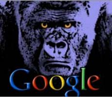 GorillOOGLE colpisce ancora: non sono in grado di interpretare i loro contratti !?!