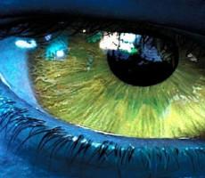 Visual, Auditory, Kinesthetic nella pratica – 3a parte